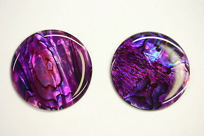 4 Purple Paua Shell Round Cabochon Calibrated 5mm 6mm 7mm 8mm 10mm 12mm 14mm