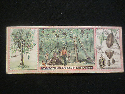 IDEAL COCOA CO. LITITZ PA. VICTORIAN ADVERTISING TRADE CARD c1890 SHOWS 1ST. BOX