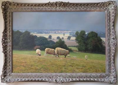 DAVID SMITH (1949-) Original Fine OIL PAINTING Essex Landscape Sheep Grazing