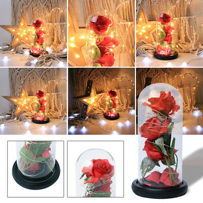 Creative Artificial Red Rose Glass Cover LED Light Decor Home Ornament Gift Hot