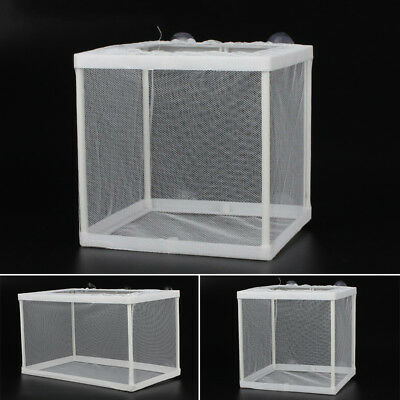 Aquarium Fish Tank Guppy Breeding Breeder Rearing Trap Box Case Hatchery