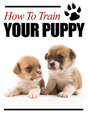 How to Train Your Puppy (E book) PDF + BONUS DOG TRAINING EBOOK! GET IT FAST!