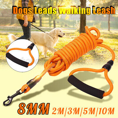 8mm Long Dog Horse Training Lunge Leash Webbing Line Lead Recall Obedience Rope