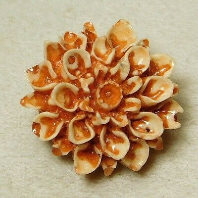 SMALL Vintage Button CARVED CELLULOID Orange REALISTIC Flower G3