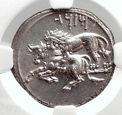 TARSOS CILICIA Authentic Ancient 331BC Silver Stater Greek Coin LION NGC i74855