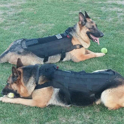 Tactical Outdoor Military Dog Clothes Load Bearing Training Vest Harness AG&