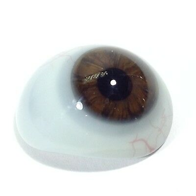 Dark Brown Antique Vintage Prosthetic Glass Eye