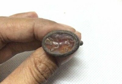 Super Nice Old Agate Carnelian Ring Animal Fox Circa 250 BC Collection Antique