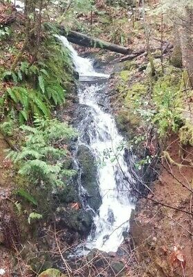 """""""joubert Pit Placer"""" Camc#0319573 Unpatented Placer Mining Claim. Sierra County!"""