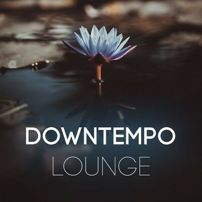 Downtempo Lounge Drum Samples