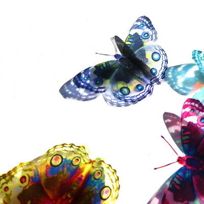 B030 - Acrylic Butterflies Weddings Crafts, Cake Topper, Decorations, Cards