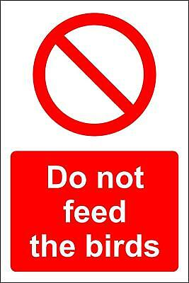 FEED THE BIRDS Sign NEW 10 x 15 Bird Watching - $22 39 | PicClick