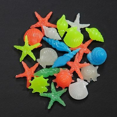 10pcs Glow in the Dark Multi-coloured Beach Conch Shell Fish Tank Aquarium Decor