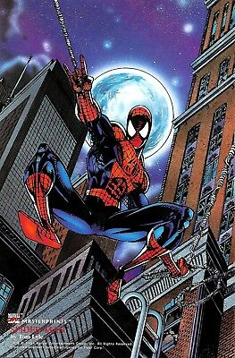 1994 SPIDER-MAN Marvel MasterPrints Promo Print by Tom Lyle - Very Rare Card