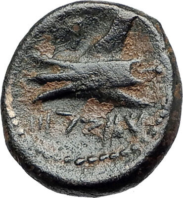 ARADOS in PHOENICIA Authentic Ancient 206BC Greek Coin w ZEUS & GALLEY i75432
