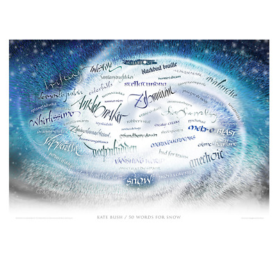 Kate Bush 50 Words For Snow  Very Limited Litho Print New Sold Out