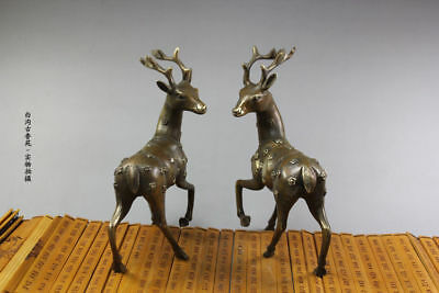 China handmade antique Bronze A pair of zodiac horses Figurines Statues