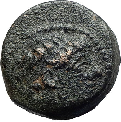 ANTIOCHOS IX Kyzikenos Authentic Ancient Seleukid Greek Coin Thunderbolt i75526