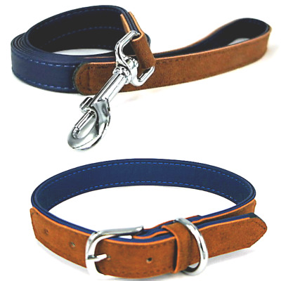 Rosewood Soft Touch Blue & Tan Luxury Suedette Dog Collars & Leads Size Choice