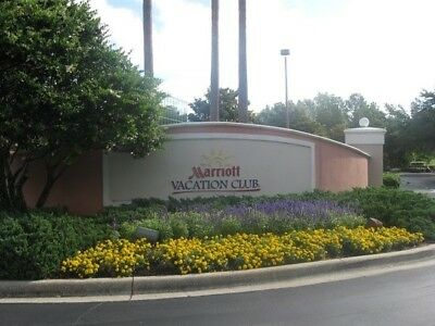 Marriott Grande Vista Orlando Villa, 3bedroom lock-out villa, UNIT 1408 WEEK 23E