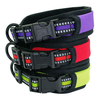 Reflective Nylon Padded Dog Collar with Durable D Ring for Small Medium Dogs