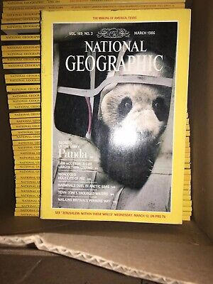 6 National Geographic Magazine Random Pick 1970s - 2010s No duplicate Issues