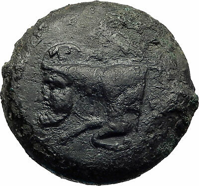 Sileraioi (The Selerians) in Sicily Authentic Ancient 354BC Greek Coin i73512
