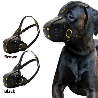 Leather Dog Muzzle Blue Terrier Pitbull Muzzles Secure Basket Adjustable Neck
