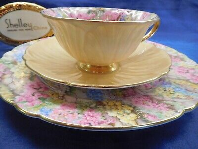 Shelley Rock Garden Chintz  Footed Oleander  Cup, Saucer And Ripon Plate  #13415