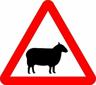 Sheep Road safety sign