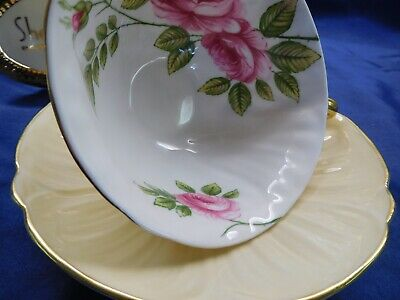 Shelley Rambler Rose Oleander Footed Fawn Color Cup And Saucer Gold Trim #13760