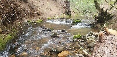 """""""shirttails"""" Camc#0319888 20 Acre Gold Mining Claim! Placer County Ca! $3,200"""
