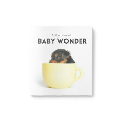 Affirmations-Little Book of Baby Wonder Great gift