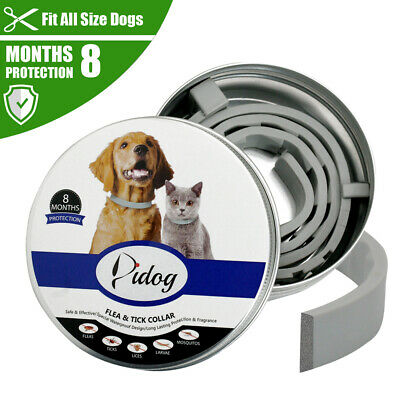 Flea & Tick Dog Collar 8 Months Protection Collar for Large Dogs over 18 lbs