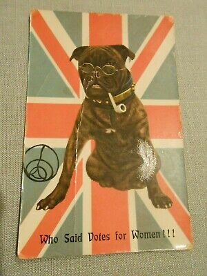ANTI SUFFRAGETTE , BULLDOG WITH PIPE, BRITISH FLAG BACKGROUND Postcard
