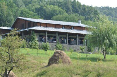 Stunning Romania Villa Slanic Prahova - 400 m on 5 Hectar Orchard - 360 views