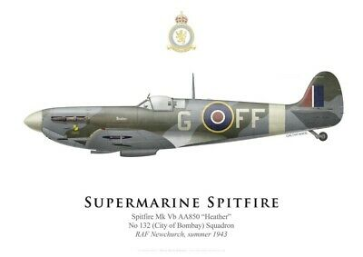 "Print Spitfire Mk V ""Heather"", No 132 Squadron RAF, summer 1943 (by G. Marie)"