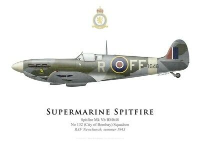 Print Spitfire Mk V, No 132 Squadron RAF, summer 1943 (by G. Marie)