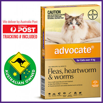 Advocate Cat  OVER 4kg 6 pack - Flea & Worm Control for Cats