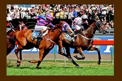 MIGHT AND POWER - 1997 Melbourne Cup winner modern Digital Photo Postcard