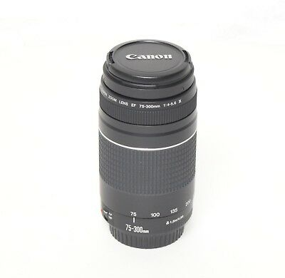Canon EF 75-300mm 1:4-5.6 III Zoom Lens