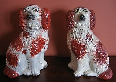 Early Antique Staffordshire Pair of King Charles Spaniels Dogs – Height 7 Inches