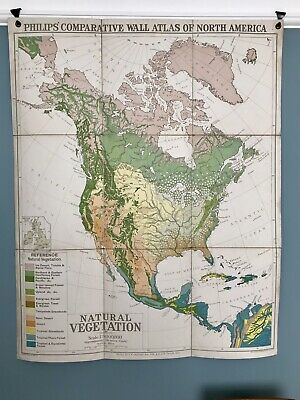 Vintage Philips' Comparative Wall Atlas of North America Vegetation School Map