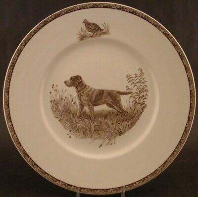 Vintage Wedgwood China American Sporting Dog Plates Wirehaired