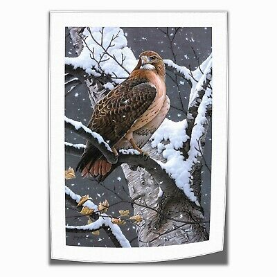 "Lady Hawk Eagle Animals Painting HD Print on Canvas Home Decor Wall Art 16""x24"""