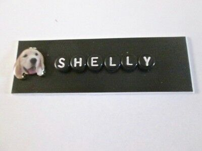 Id Name Tag Badge Magnet Or Pin Dog Groomer,pediatric,teacher,veterinarian,nurse