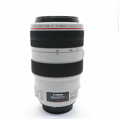 Canon EF70-300mm F4-5.6L IS USM #30