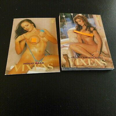 Non Sport Trading Cards 15 Different Playboy Vixens(C)