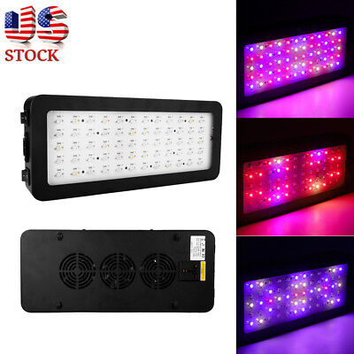 600W Full Spectrum LED Grow Light Hydroponics Flower Fruits Veg Plant Bloom Lamp