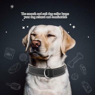 Leather Dog Pet Puppy Cat Anti-lost Comfortable Collar Neck Buckle Adjustable